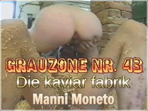Grauzone-Nr.-43-Die-kaviar-fabrik-Manni-Moneto.jpg